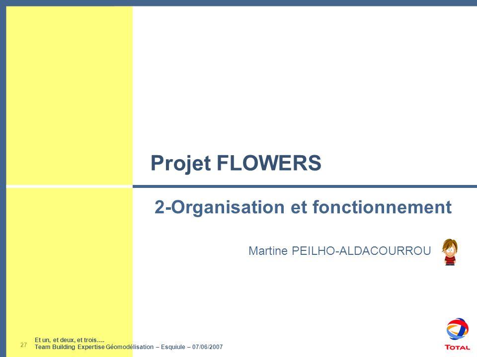 Et un, et deux, et trois…. Team Building Expertise Géomodélisation – Esquiule – 07/06/2007 27 Projet FLOWERS Martine PEILHO-ALDACOURROU 2-Organisation