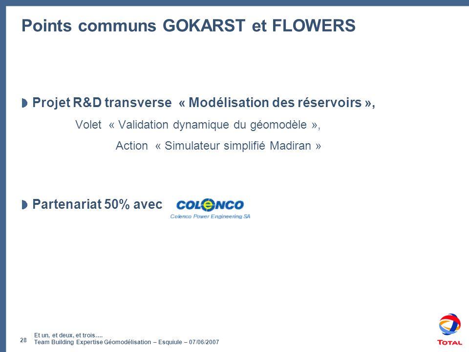 Et un, et deux, et trois…. Team Building Expertise Géomodélisation – Esquiule – 07/06/2007 28 Points communs GOKARST et FLOWERS Projet R&D transverse