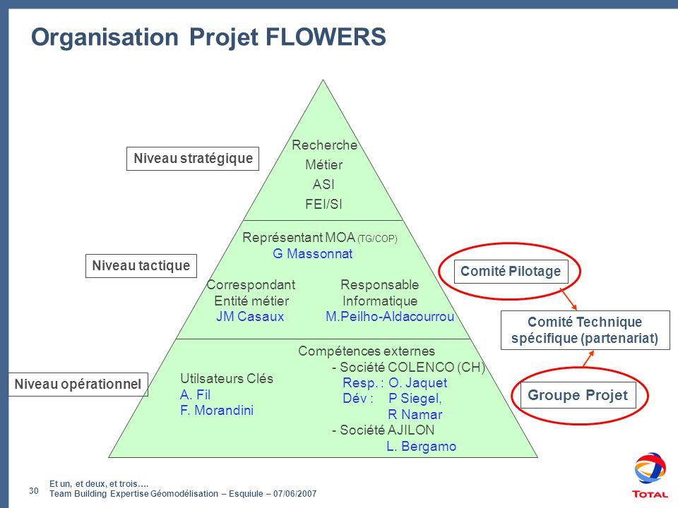 Et un, et deux, et trois…. Team Building Expertise Géomodélisation – Esquiule – 07/06/2007 30 Organisation Projet FLOWERS Comité Pilotage Groupe Proje