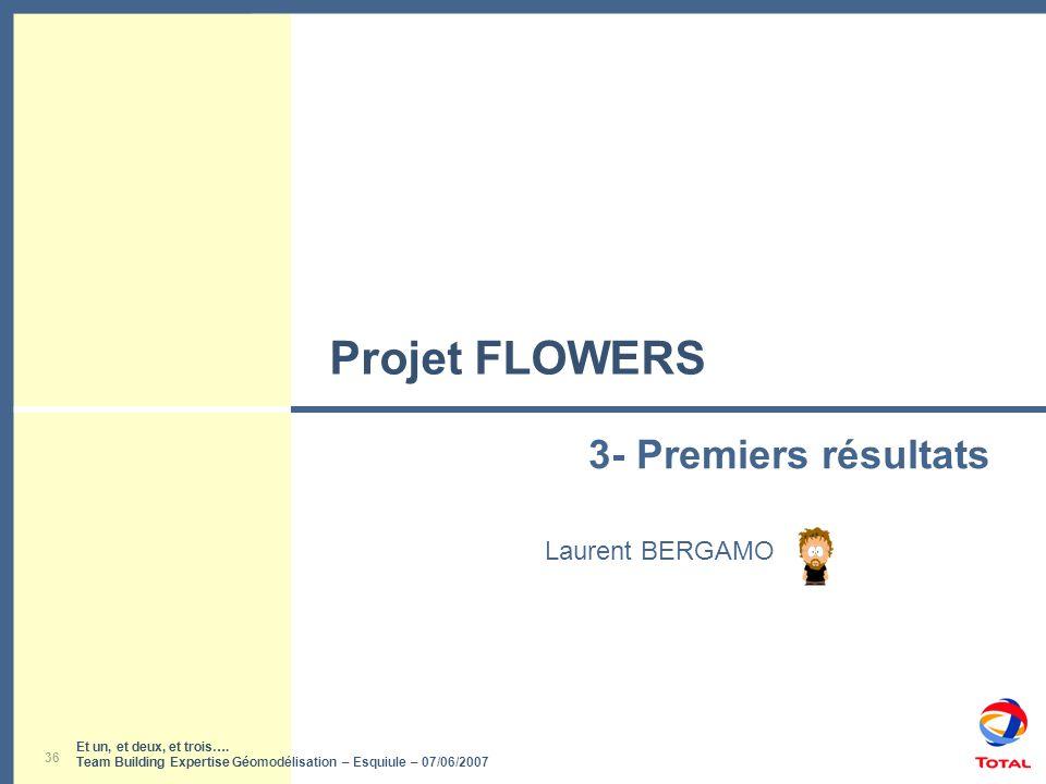 Et un, et deux, et trois…. Team Building Expertise Géomodélisation – Esquiule – 07/06/2007 36 Projet FLOWERS Laurent BERGAMO 3- Premiers résultats Et