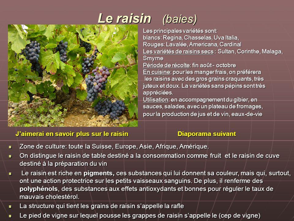 Le raisin (baies) Les principales variétés sont: blancs: Regina, Chasselas, Uva Italia, Rouges: Lavalée, Americana, Cardinal Les variétés de raisins s