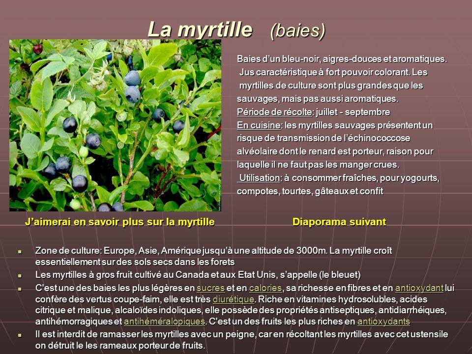 La myrtille (baies) Baies d'un bleu-noir, aigres-douces et aromatiques. Jus caractéristique à fort pouvoir colorant. Les Jus caractéristique à fort po