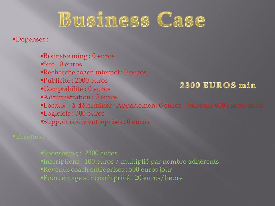  Dépenses :  Brainstorming : 0 euros  Site : 0 euros  Recherche coach internet : 0 euros  Publicité : 2000 euros  Comptabilité : 0 euros  Admin