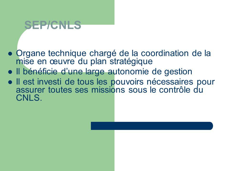 SEP/CNLS  Organe technique chargé de la coordination de la mise en œuvre du plan stratégique  Il bénéficie d'une large autonomie de gestion  Il est investi de tous les pouvoirs nécessaires pour assurer toutes ses missions sous le contrôle du CNLS.
