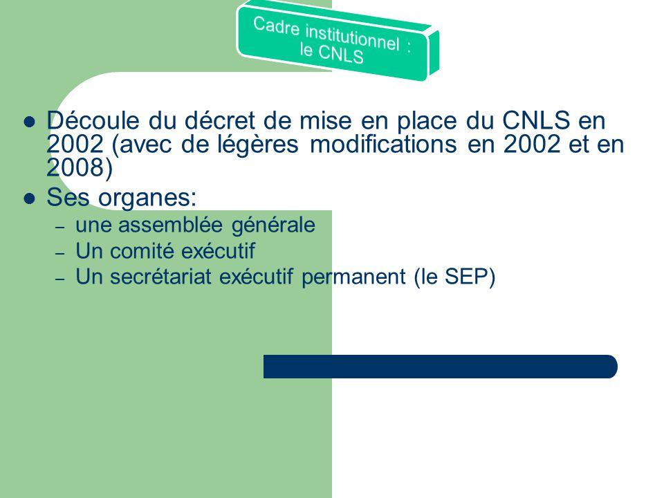  Découle du décret de mise en place du CNLS en 2002 (avec de légères modifications en 2002 et en 2008)  Ses organes: – une assemblée générale – Un comité exécutif – Un secrétariat exécutif permanent (le SEP)