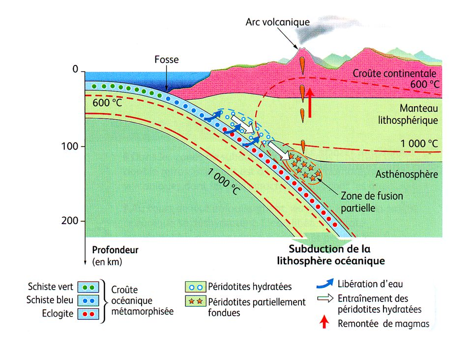 III.Subduction et production de roches plutoniques 1.