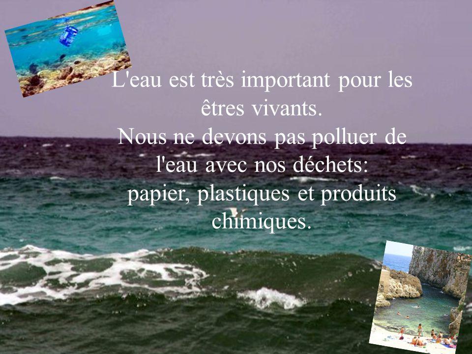 L'eau est très important pour les êtres vivants. Nous ne devons pas polluer de l'eau avec nos déchets: papier, plastiques et produits chimiques.