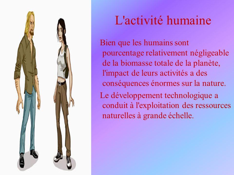 L'activité humaine Bien que les humains sont pourcentage relativement négligeable de la biomasse totale de la planète, l'impact de leurs activités a d
