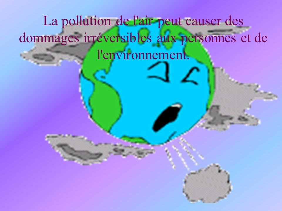 La pollution de l'air peut causer des dommages irréversibles aux personnes et de l'environnement.