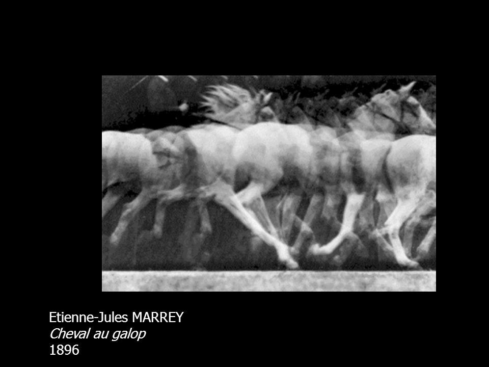 Etienne-Jules MARREY Cheval au galop 1896