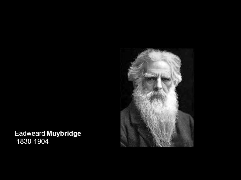 Eadweard Muybridge Electronic timing device Projet à l'University of Pennsylvania 1883–1887 pour Animal Locomotion (vues de devant et de dos)