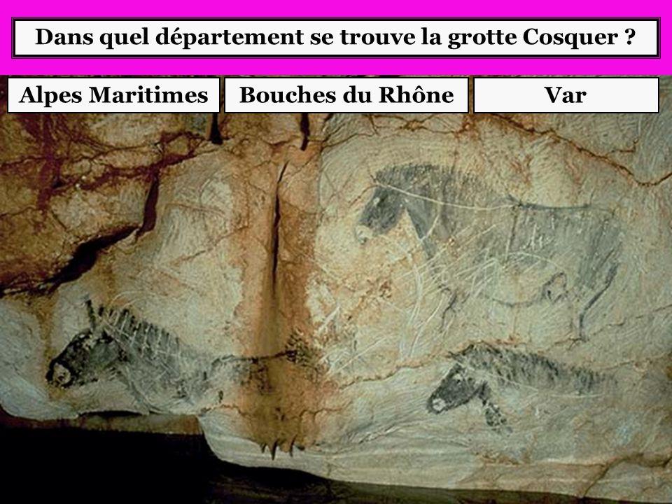 Dans quelle ville se trouve le dolmen « Pierre de la fée » ? DraguignanGrasseManosque