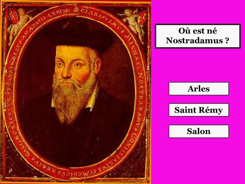 Où est né Nostradamus ? Salon Saint Rémy Arles