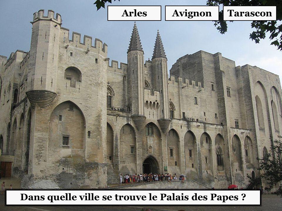 Dans quelle ville se trouve le Palais des Papes ? AvignonTarasconArles