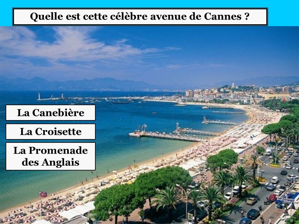 Quelle est cette célèbre avenue de Cannes ? La Promenade des Anglais La Croisette La Canebière