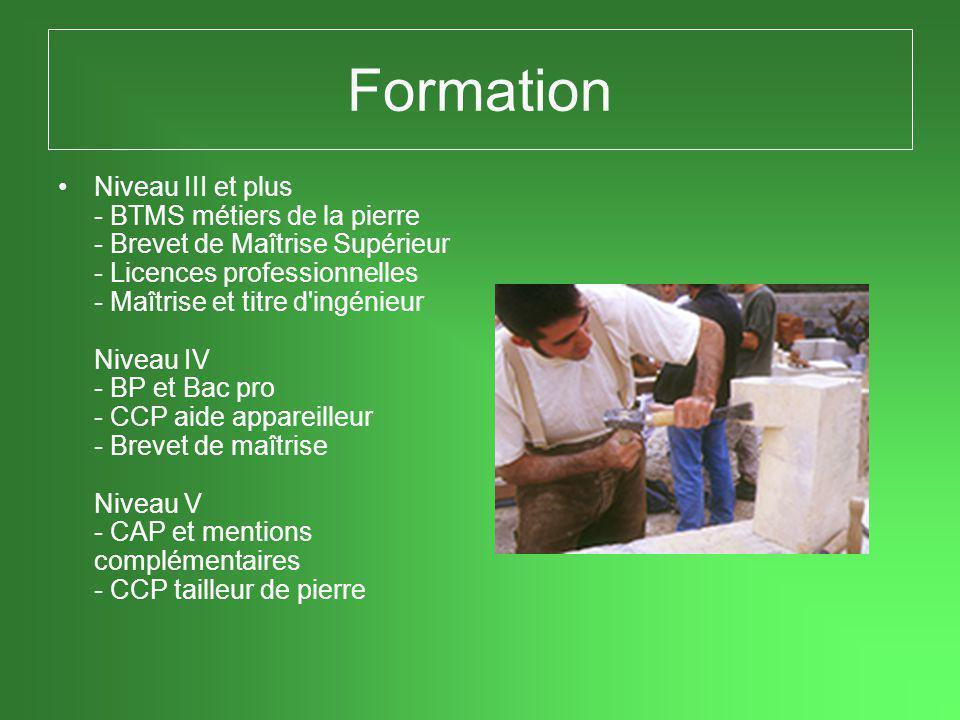 Formation •Niveau III et plus - BTMS métiers de la pierre - Brevet de Maîtrise Supérieur - Licences professionnelles - Maîtrise et titre d ingénieur Niveau IV - BP et Bac pro - CCP aide appareilleur - Brevet de maîtrise Niveau V - CAP et mentions complémentaires - CCP tailleur de pierre