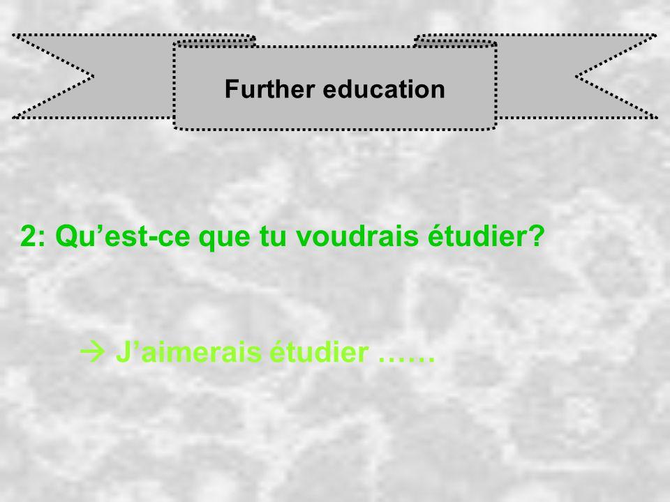 Further education 2: Qu'est-ce que tu voudrais étudier  J'aimerais étudier ……