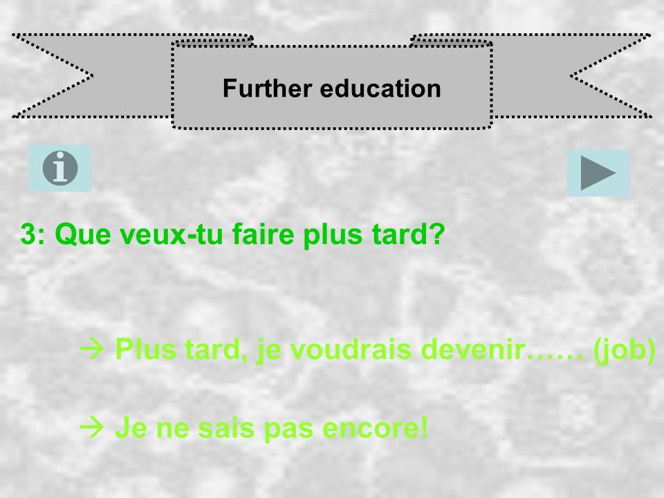 Further education 3: Que veux-tu faire plus tard.