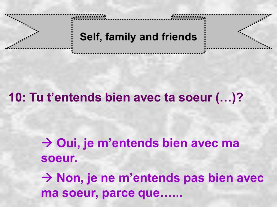 Self, family and friends 10: Tu t'entends bien avec ta soeur (…).