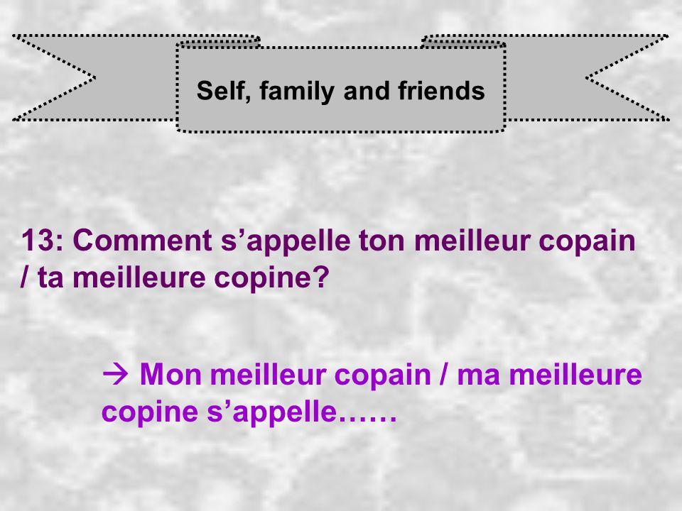 Self, family and friends 13: Comment s'appelle ton meilleur copain / ta meilleure copine.