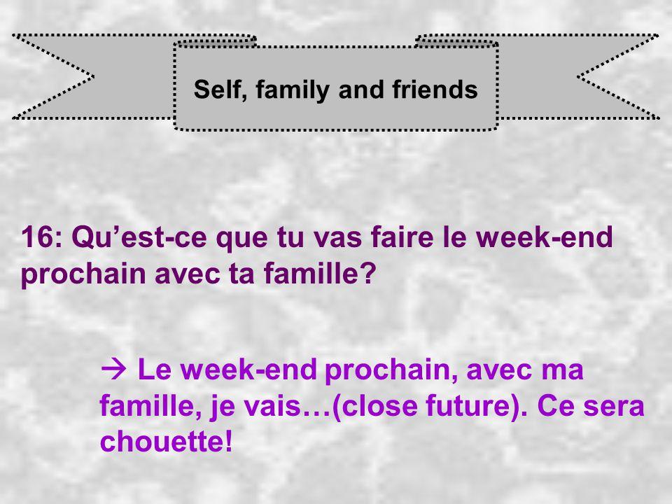 Self, family and friends 16: Qu'est-ce que tu vas faire le week-end prochain avec ta famille.