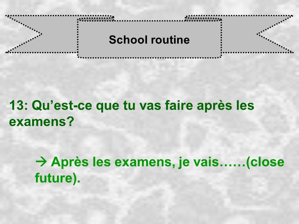 School routine 13: Qu'est-ce que tu vas faire après les examens.
