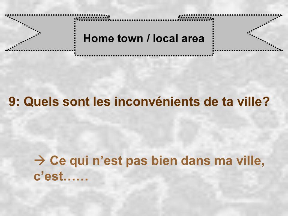 Home town / local area 9: Quels sont les inconvénients de ta ville.
