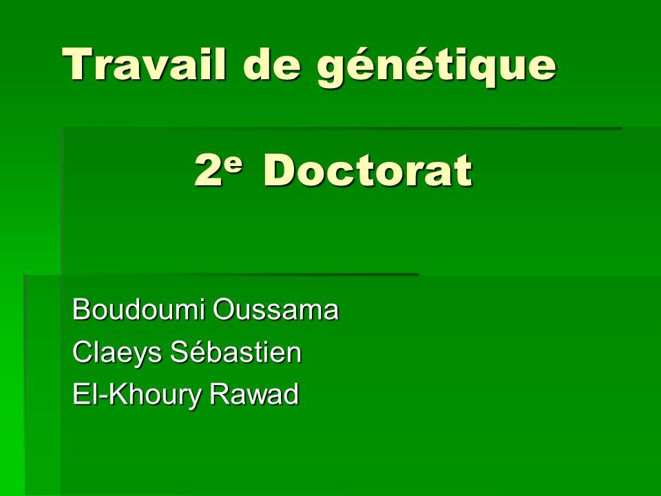 Travail de génétique 2 e Doctorat Boudoumi Oussama Claeys Sébastien El-Khoury Rawad
