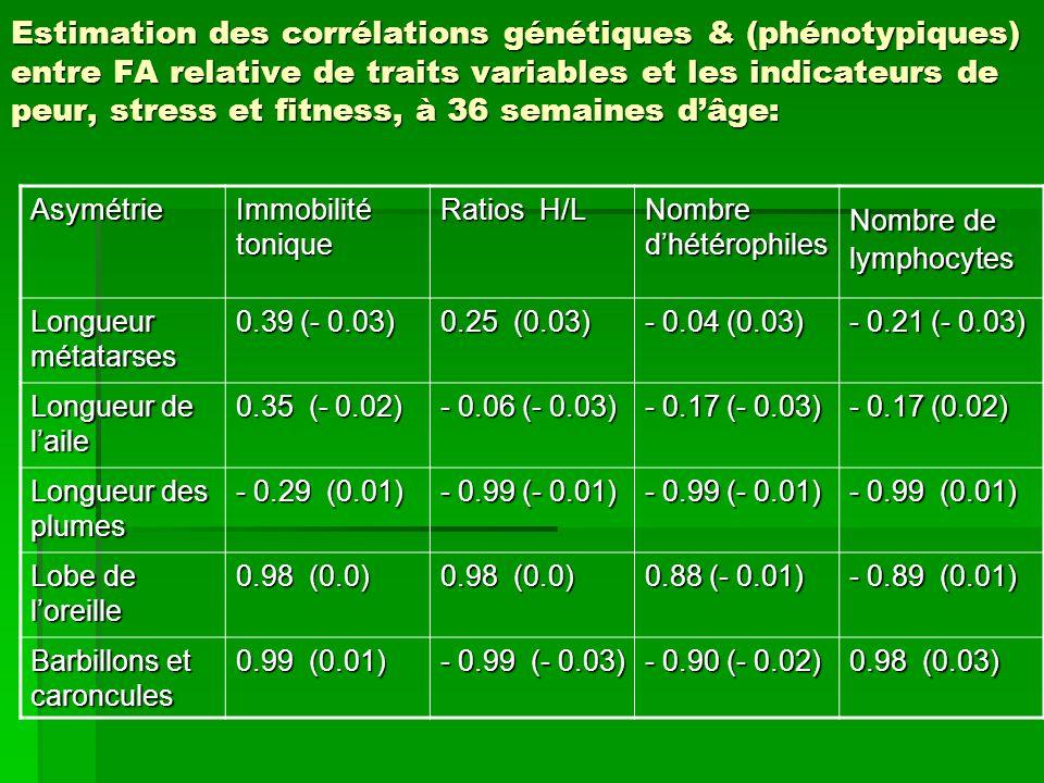 Estimation des corrélations génétiques & (phénotypiques) entre FA relative de traits variables et les indicateurs de peur, stress et fitness, à 36 semaines d'âge: Asymétrie Immobilité tonique Ratios H/L Nombre d'hétérophiles Nombre de lymphocytes Longueur métatarses 0.39 (- 0.03) 0.25 (0.03) - 0.04 (0.03) - 0.21 (- 0.03) Longueur de l'aile 0.35 (- 0.02) - 0.06 (- 0.03) - 0.17 (- 0.03) - 0.17 (0.02) Longueur des plumes - 0.29 (0.01) - 0.99 (- 0.01) - 0.99 (0.01) Lobe de l'oreille 0.98 (0.0) 0.88 (- 0.01) - 0.89 (0.01) Barbillons et caroncules 0.99 (0.01) - 0.99 (- 0.03) - 0.90 (- 0.02) 0.98 (0.03)