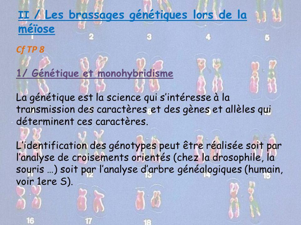 II / Les brassages génétiques lors de la méïose Cf TP 8 1/ Génétique et monohybridisme La génétique est la science qui s'intéresse à la transmission d