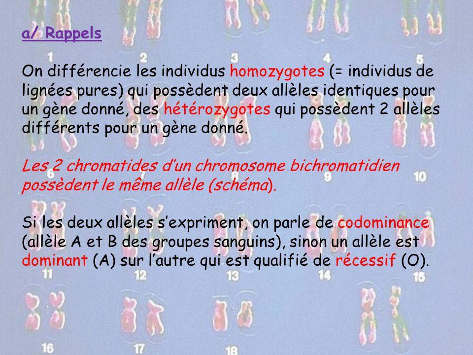a/ Rappels On différencie les individus homozygotes (= individus de lignées pures) qui possèdent deux allèles identiques pour un gène donné, des hétér