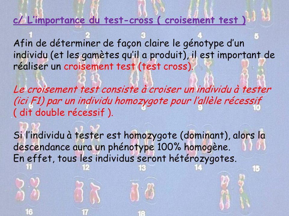 c/ L'importance du test-cross ( croisement test ) Afin de déterminer de façon claire le génotype d'un individu (et les gamètes qu'il a produit), il es