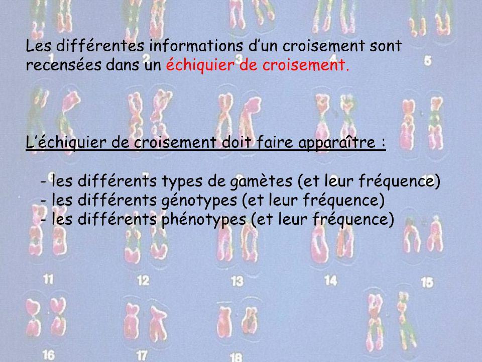 Les différentes informations d'un croisement sont recensées dans un échiquier de croisement. L'échiquier de croisement doit faire apparaître : - les d