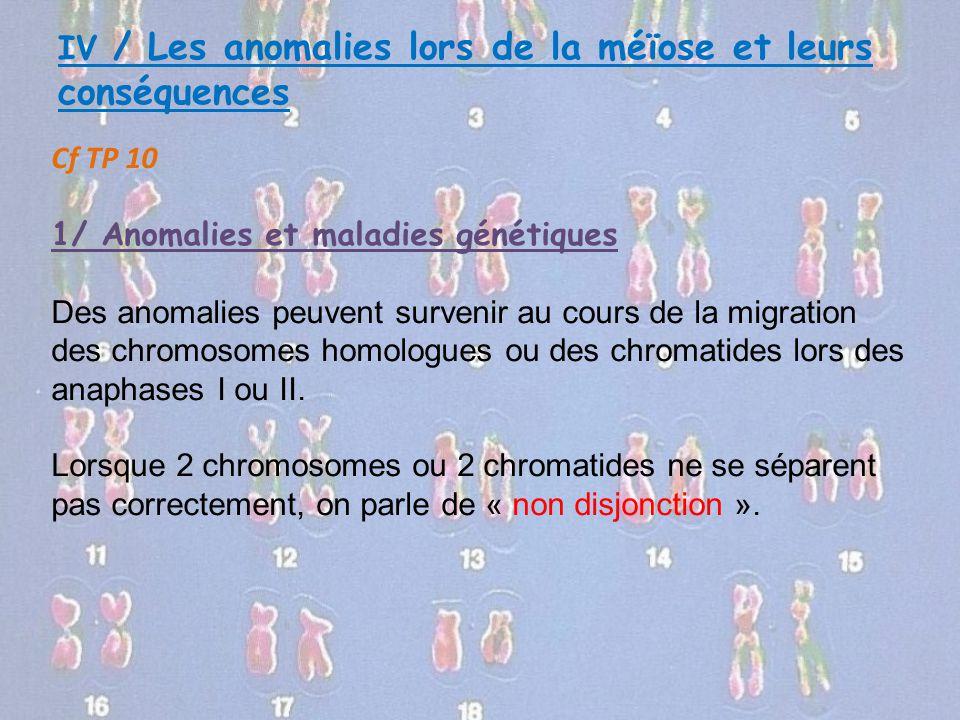 IV / Les anomalies lors de la méïose et leurs conséquences Cf TP 10 1/ Anomalies et maladies génétiques Des anomalies peuvent survenir au cours de la