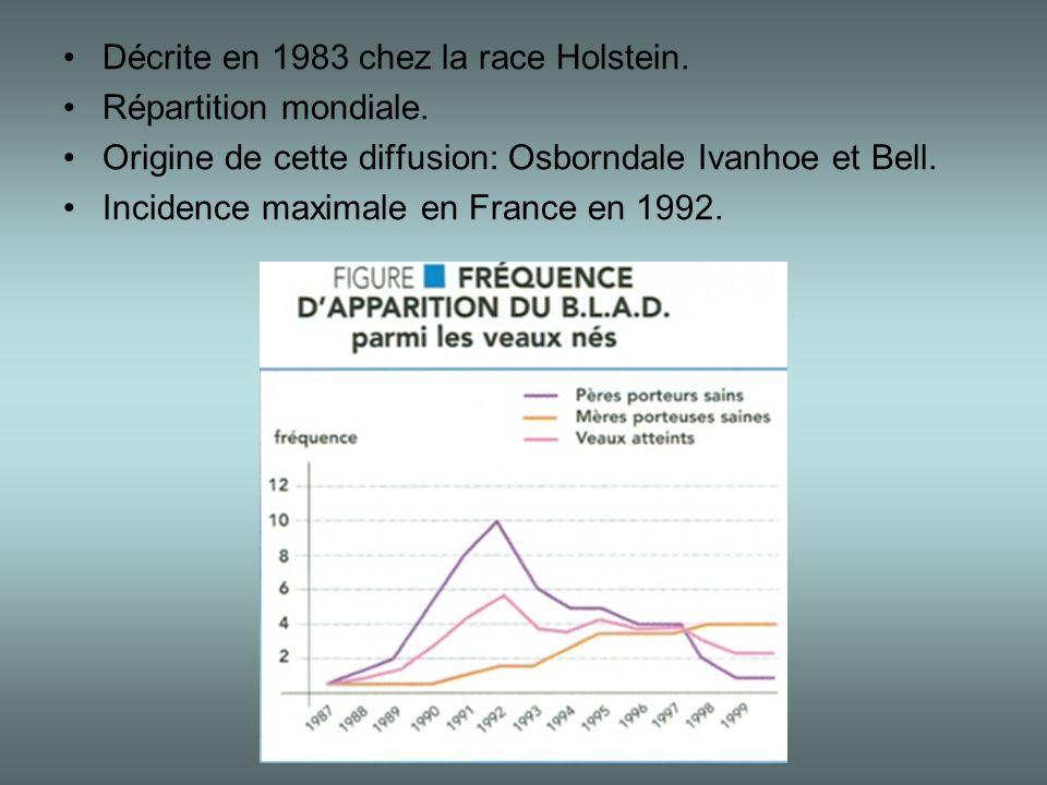 •Décrite en 1983 chez la race Holstein. •Répartition mondiale. •Origine de cette diffusion: Osborndale Ivanhoe et Bell. •Incidence maximale en France