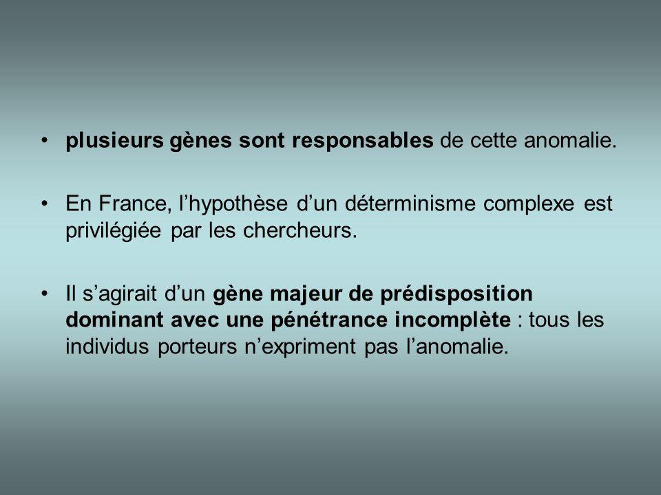 •plusieurs gènes sont responsables de cette anomalie. •En France, l'hypothèse d'un déterminisme complexe est privilégiée par les chercheurs. •Il s'agi