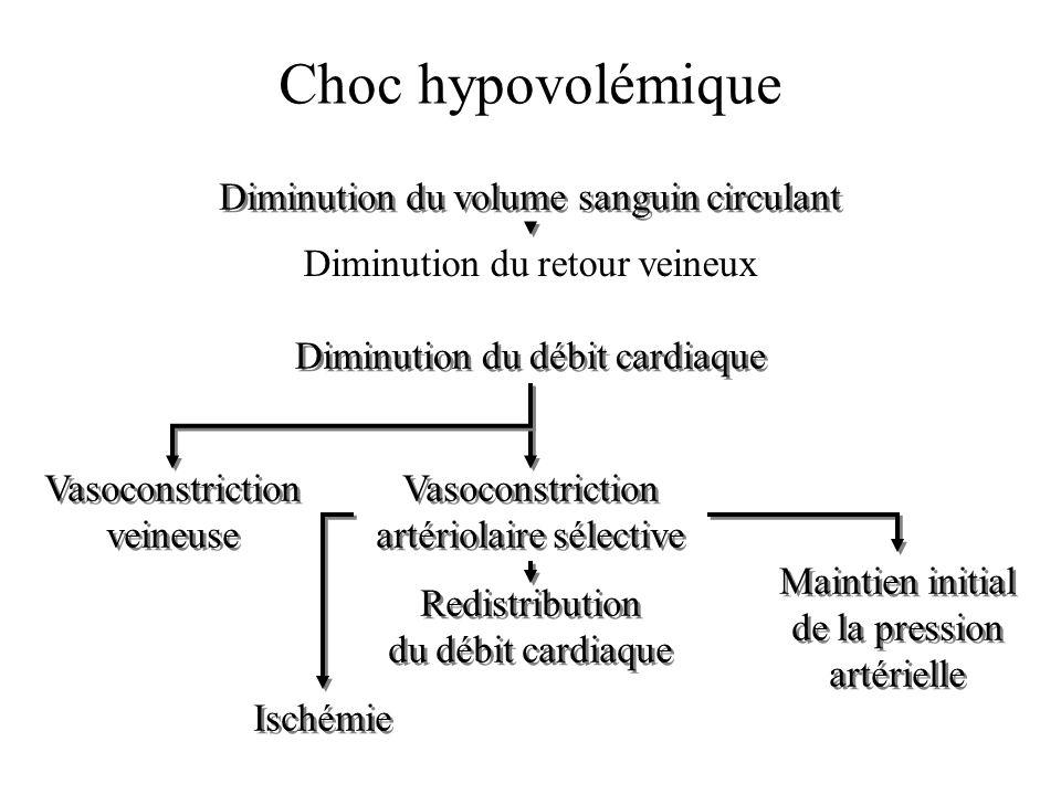Choc hypovolémique Diminution du retour veineux Diminution du volume sanguin circulant Diminution du débit cardiaque Vasoconstriction artériolaire sél