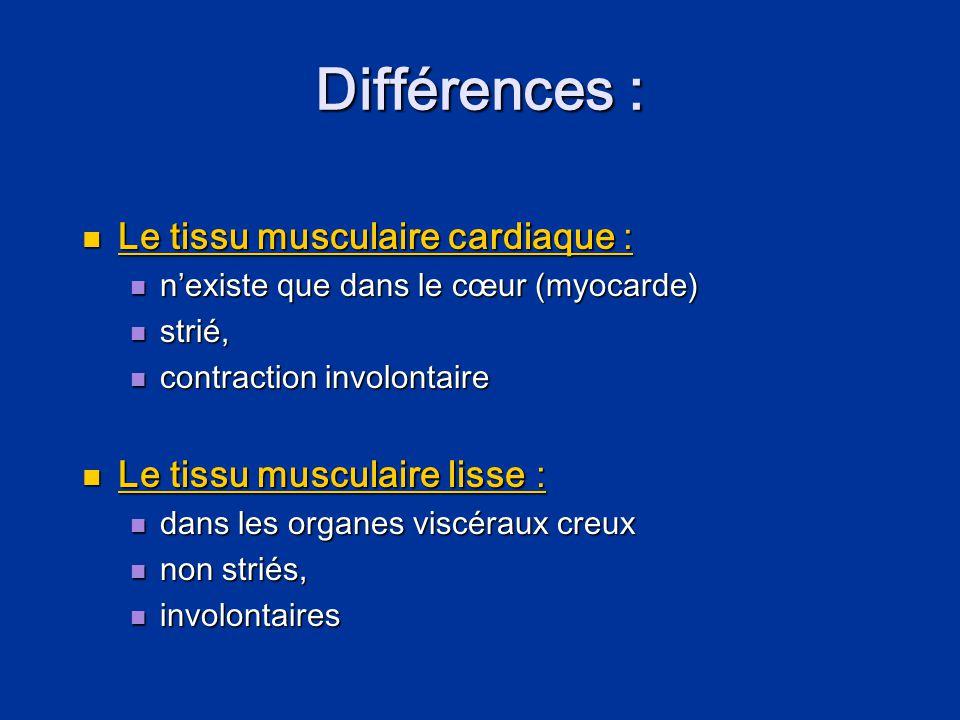Différences :  Le tissu musculaire cardiaque :  n'existe que dans le cœur (myocarde)  strié,  contraction involontaire  Le tissu musculaire lisse