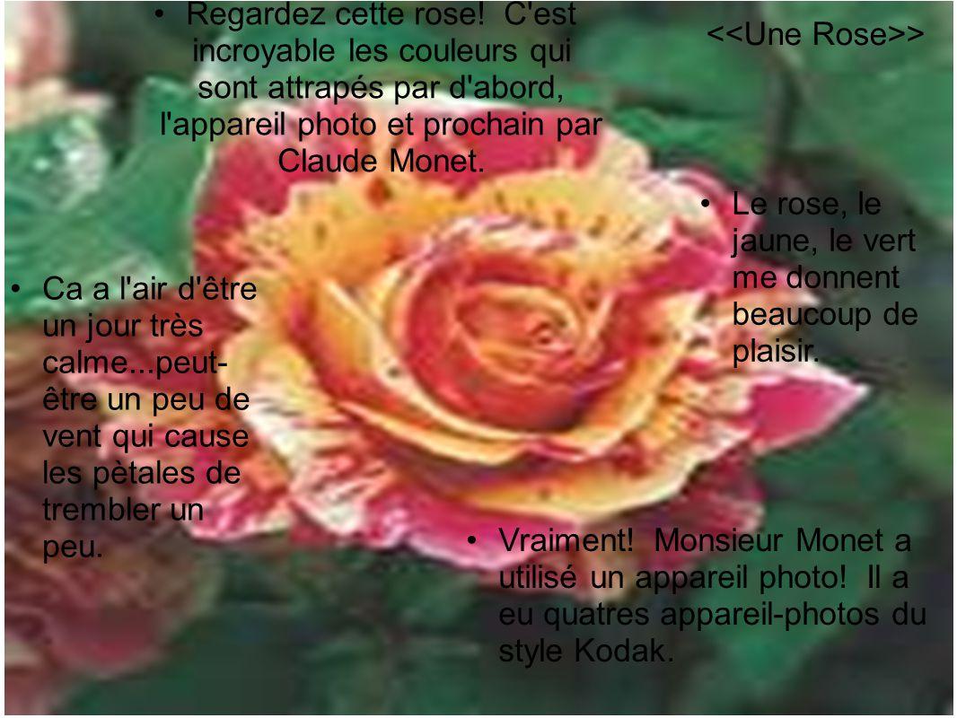 •Regardez cette rose! C'est incroyable les couleurs qui sont attrapés par d'abord, l'appareil photo et prochain par Claude Monet. •Vraiment! Monsieur