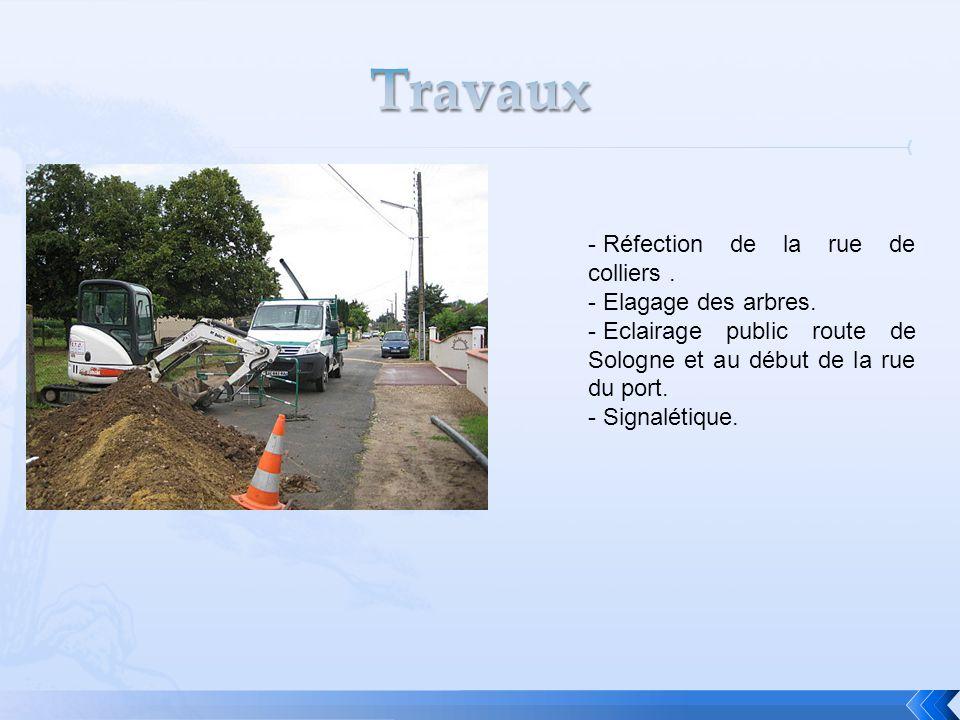 - Réfection de la rue de colliers. - Elagage des arbres. - Eclairage public route de Sologne et au début de la rue du port. - Signalétique.