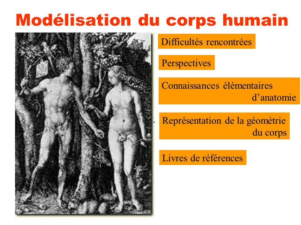 Modélisation du corps humain Difficultés rencontrées Perspectives Connaissances élémentaires d'anatomie Représentation de la géométrie du corps Livres