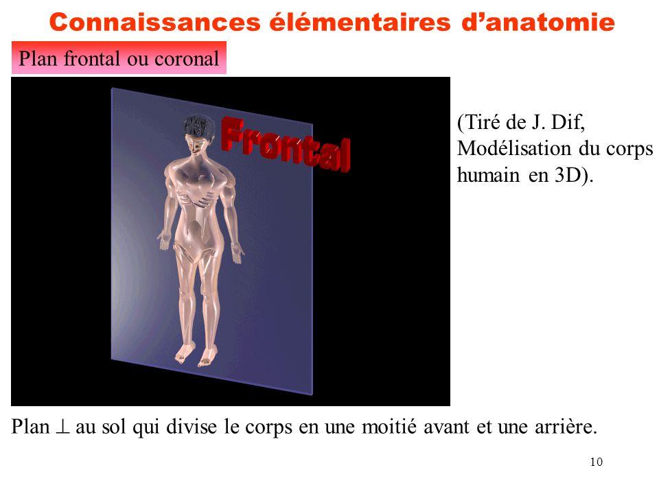 10 Connaissances élémentaires d'anatomie Plan frontal ou coronal (Tiré de J. Dif, Modélisation du corps humain en 3D). Plan  au sol qui divise le cor