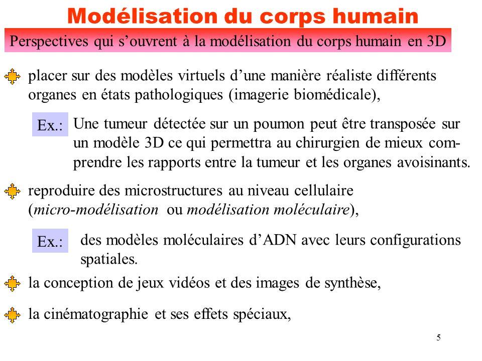 6 Modélisation du corps humain Perspectives qui s'ouvrent à la modélisation du corps humain en 3D l'immense potentiel dans le domaine biomédical, Le squelette d'un homme en 3D (source catalogue DataLabs) (248 380 polygones) A nécessité le travail d'une équipe de trois personnes pendant une durée de 8 mois.