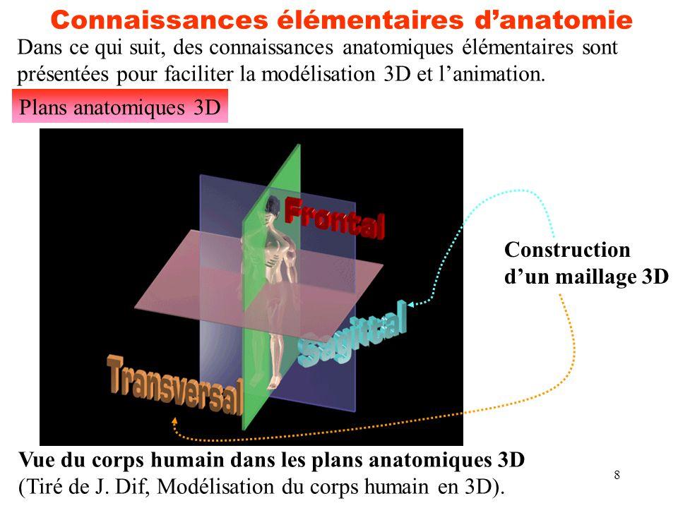8 Connaissances élémentaires d'anatomie Plans anatomiques 3D Vue du corps humain dans les plans anatomiques 3D (Tiré de J. Dif, Modélisation du corps