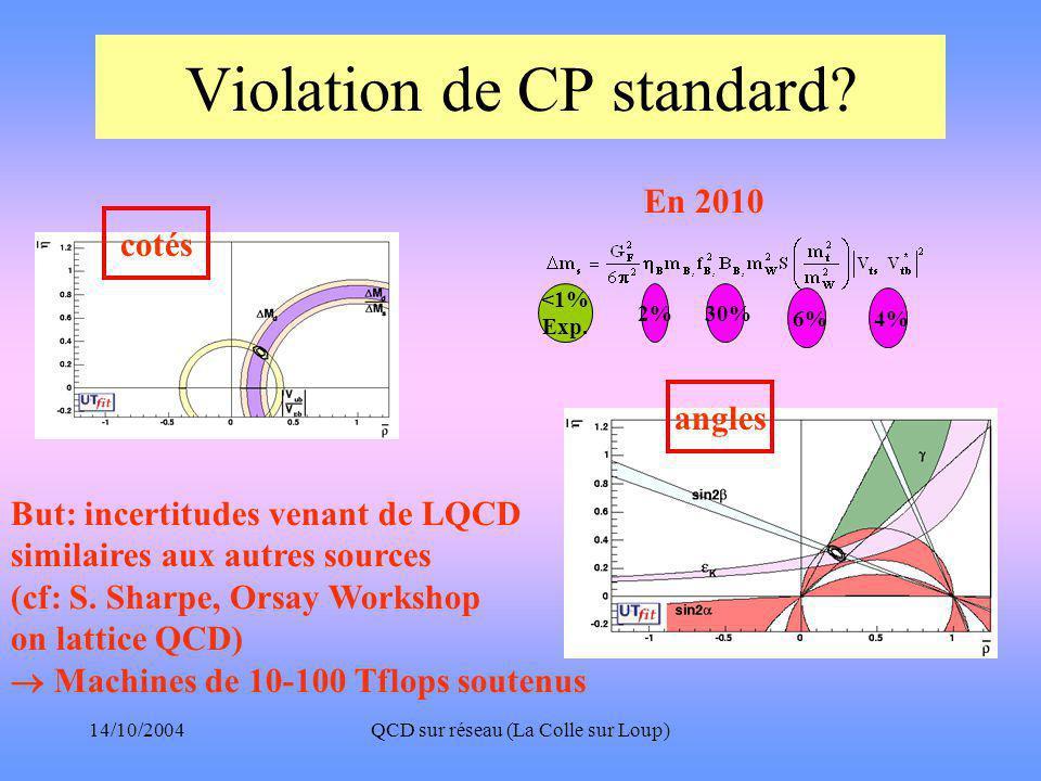 14/10/2004QCD sur réseau (La Colle sur Loup) Violation de CP standard.