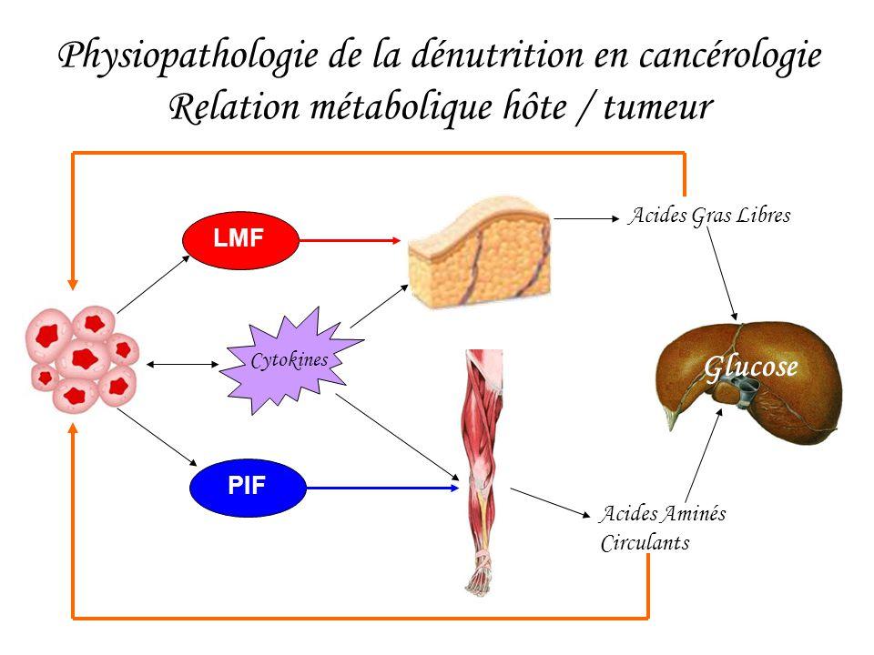 Physiopathologie de la dénutrition en cancérologie Relation métabolique hôte / tumeur Cytokines LMF PIF Acides Gras Libres Acides Aminés Circulants Gl