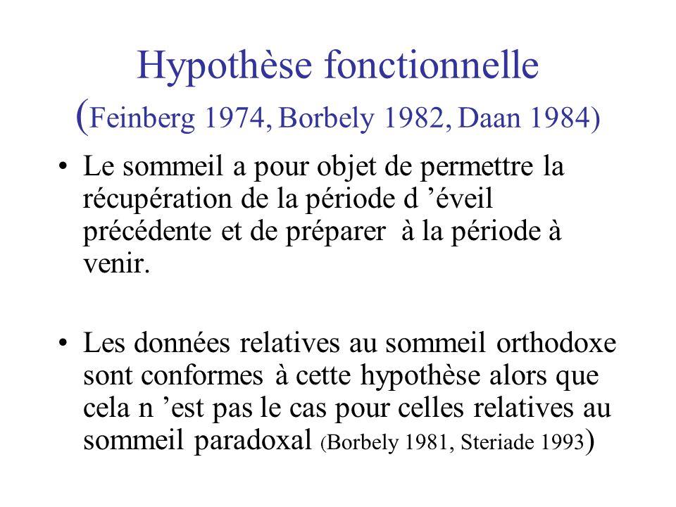 Hypothèse fonctionnelle ( Feinberg 1974, Borbely 1982, Daan 1984) •Le sommeil a pour objet de permettre la récupération de la période d 'éveil précéde