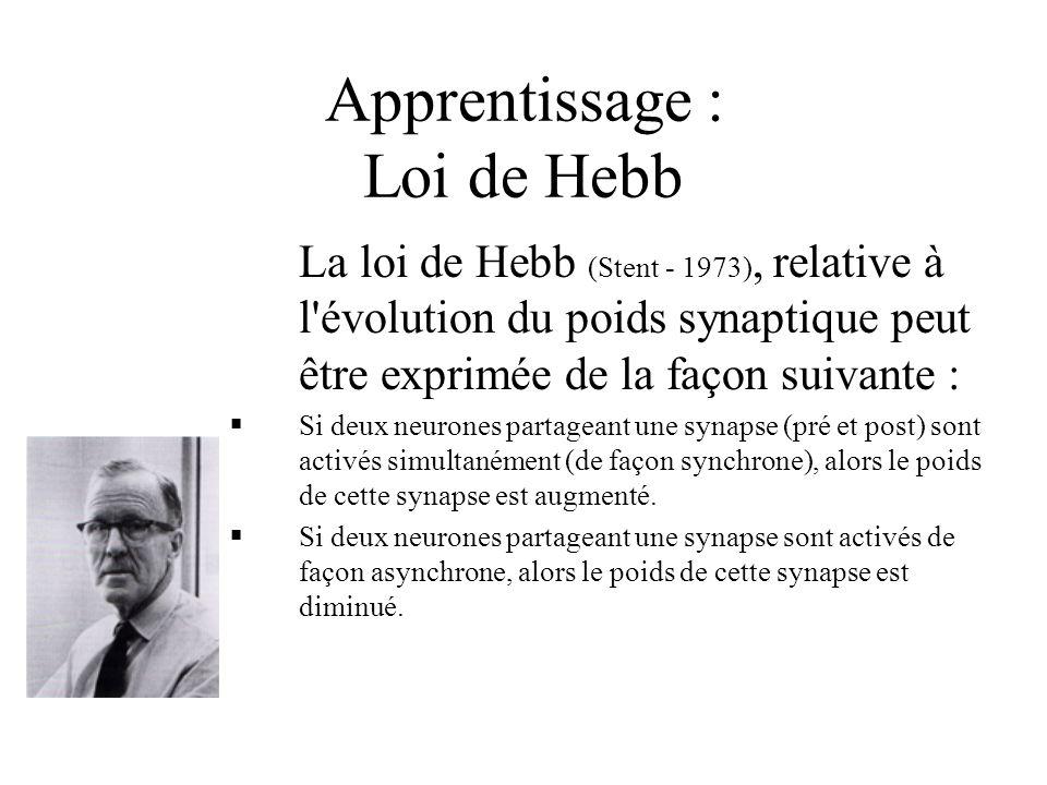 Apprentissage : Loi de Hebb La loi de Hebb (Stent - 1973), relative à l'évolution du poids synaptique peut être exprimée de la façon suivante :  Si d