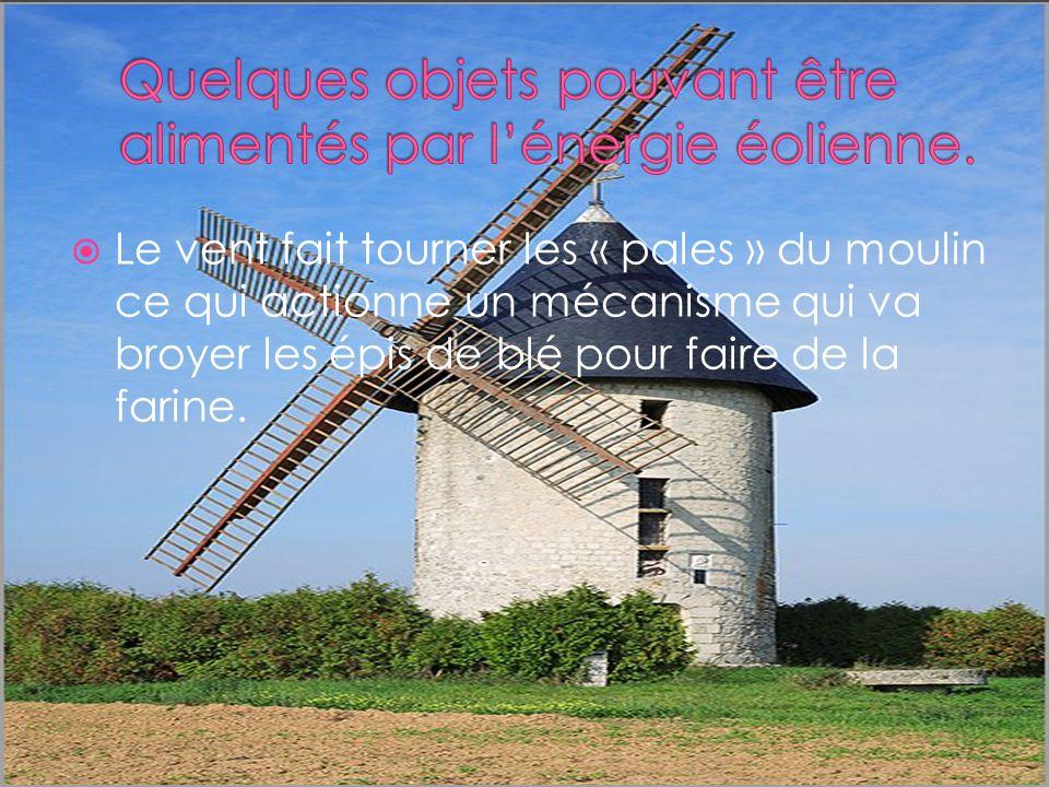 Le vent fait tourner les « pales » du moulin ce qui actionne un mécanisme qui va broyer les épis de blé pour faire de la farine.