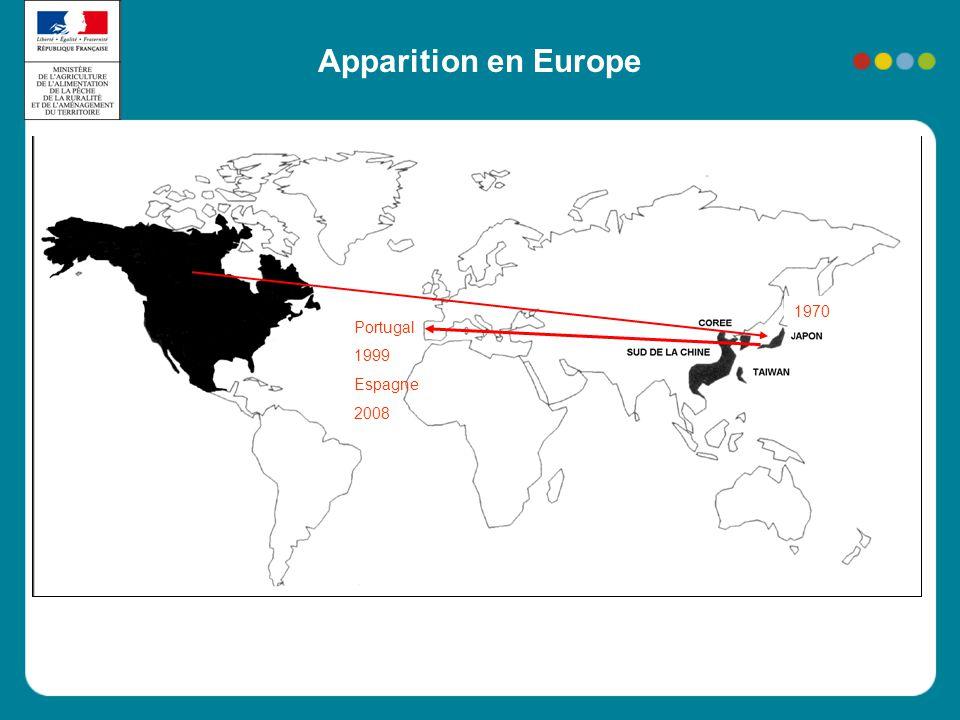 Apparition en Europe Portugal 1999 Espagne 2008 1970